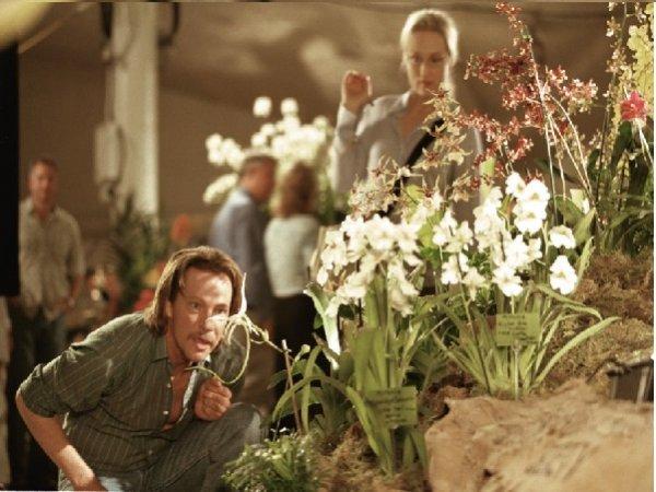 Risultati immagini per il ladro di orchidee film 2002